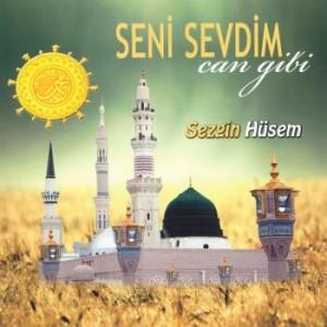 Sezgin Hüsem - Seni Sevdim Can Gibi 2014
